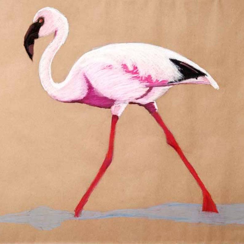 Malerin Wien Österreich Flamingo